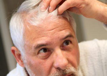 استعادة الشعر